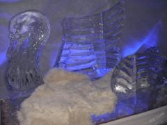 Ozdoba zrobiona z lodu na imprezę