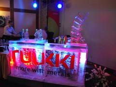 Bar lodowy na imprezę w Poznaniu